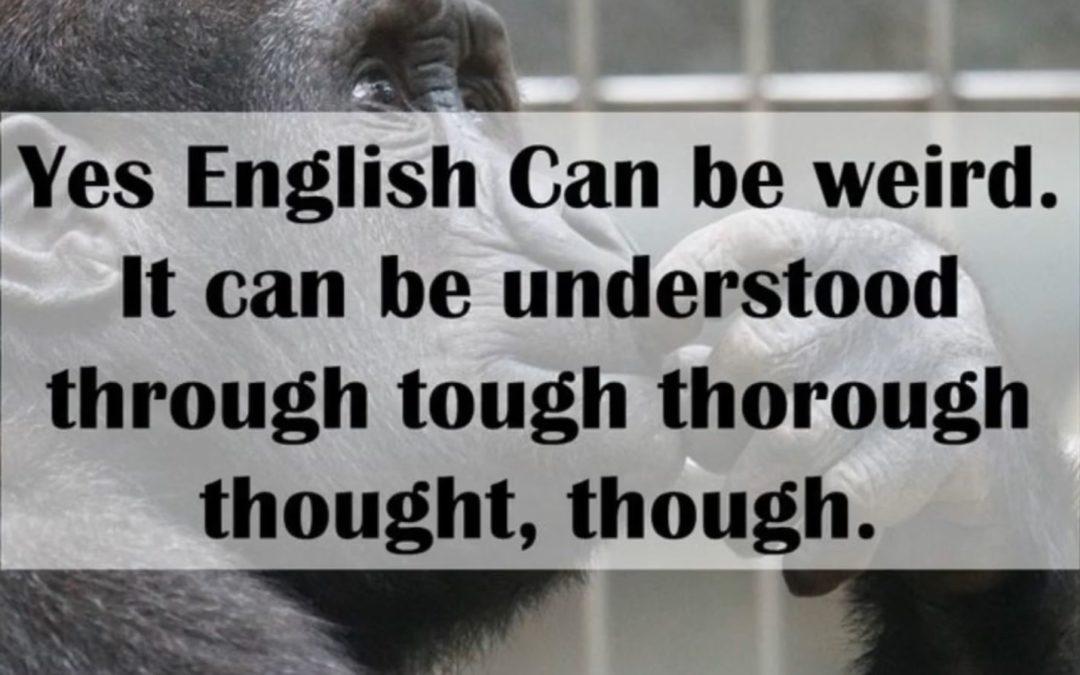 2.2 Englisch einschließlich Wirtschaftssprache